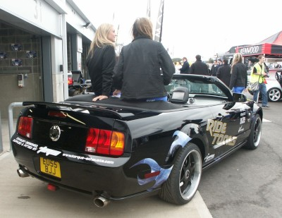 Mustang Rear: click to zoom picture.