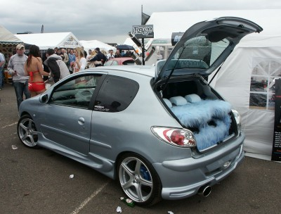 Peugeot 206: click to zoom picture.